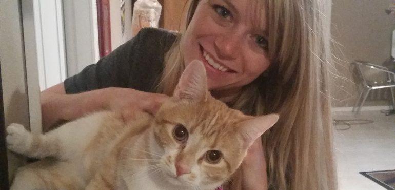 New owner adopting a cat