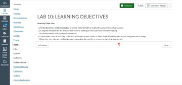 Canvas Lab Learning Objectives example