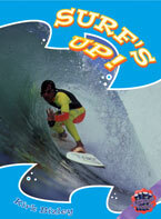 Rigby Literacy Collections Level 6 Phase 10: Surf's Up! (Reading Level 30+/F&P Level V-Z)