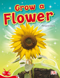 Bug Club Level  5 - Red: Grow a Flower (Reading Level 5/F&P Level D)