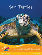 Sails Additional Fluency - Orange: Sea Turtles (Reading Level 16/F&P Level I)