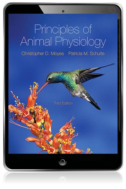 Ebook download diversity animal