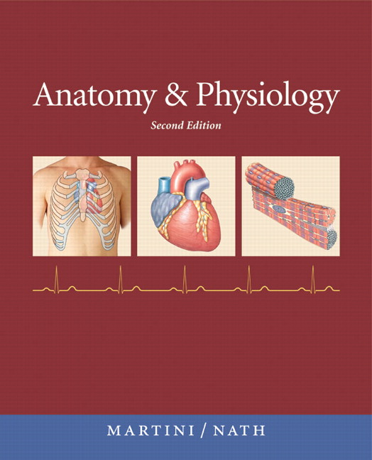 Anatomy & Physiology with IP-10, 2nd, Martini, Frederic H. Et Al ...