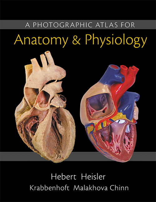 Photographic Atlas for Anatomy & Physiology, A, 1st, Hebert, Nora Et ...