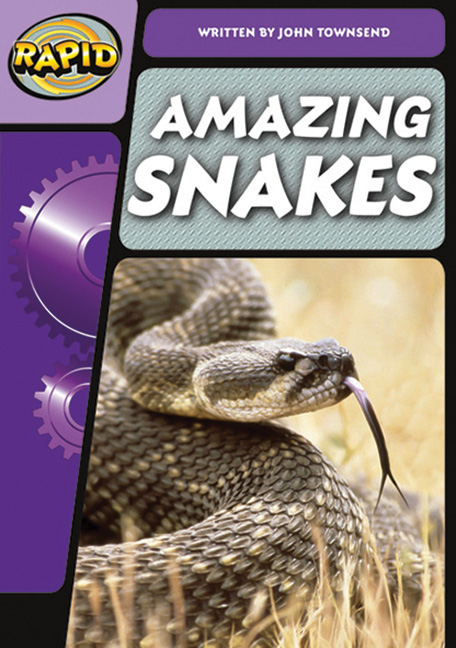 Rapid Phonics Step 3: Amazing Snakes