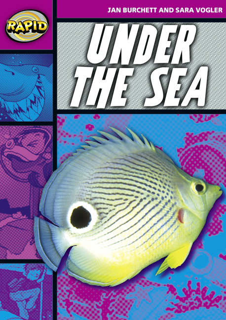 Rapid Stage 3 Set A: Under the Sea (Series 1)