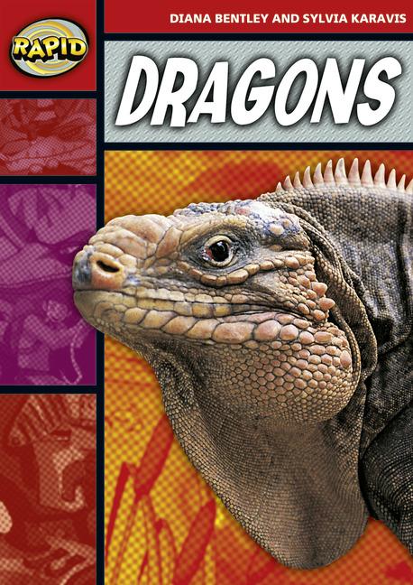 Rapid Stage 2 Set B: Dragons (Series 1)