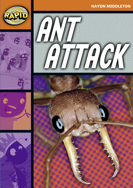 Rapid Stage 4 Set B: Ant Attack (Series 1)