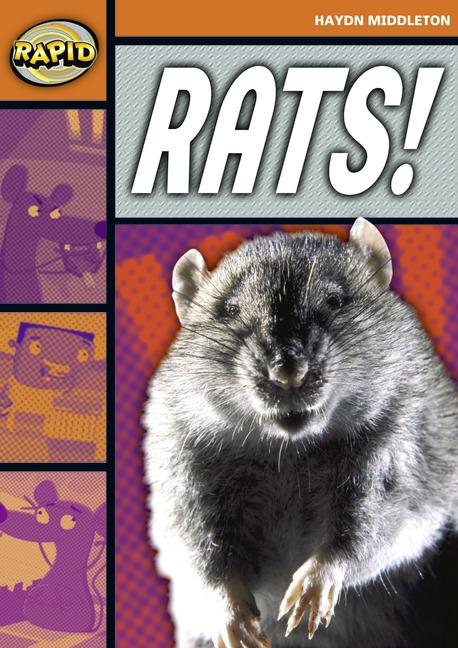 Rapid Stage 4 Set B: Rats! (Series 1)
