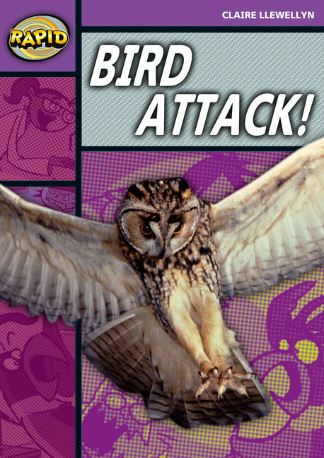 Rapid Stage 1 Set B: Bird Attack! (Series 2)