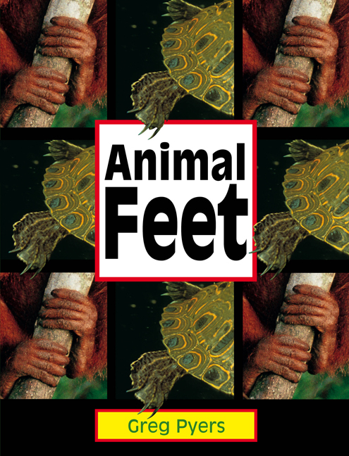 Rigby Literacy Early Level 2: Animal Feet (Reading Level 6/F&P Level D)