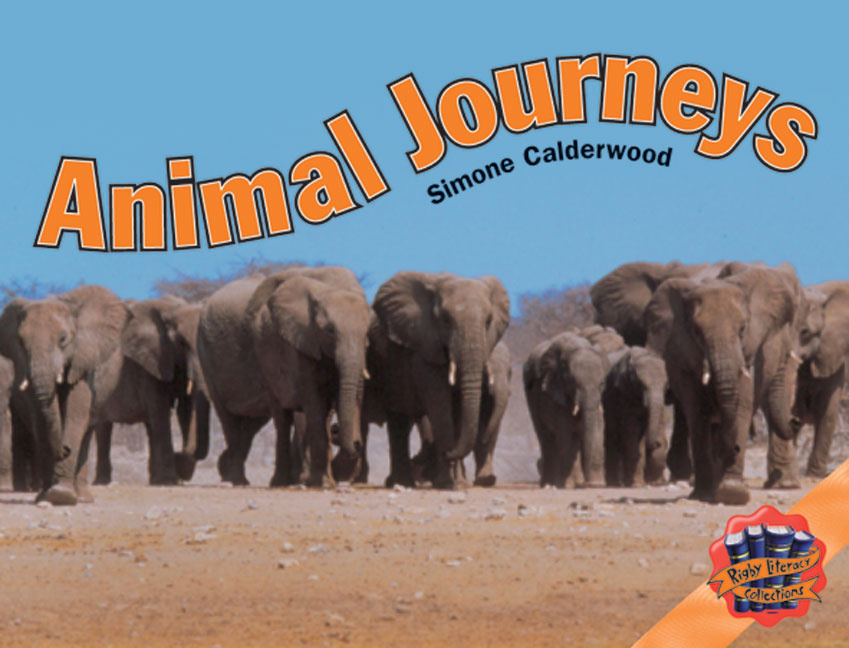 Rigby Literacy Collections Level 4 Phase 4: Animal Journeys (Reading Level 29-30/F&P Levels T-U)