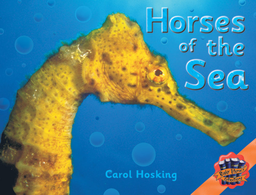 Rigby Literacy Collections Level 4 Phase 5: Horses of the Sea (Reading Level 29-30/F&P Levels T-U)