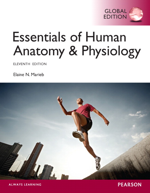 Essentials Of Human Anatomy Physiology Global Edition 11th