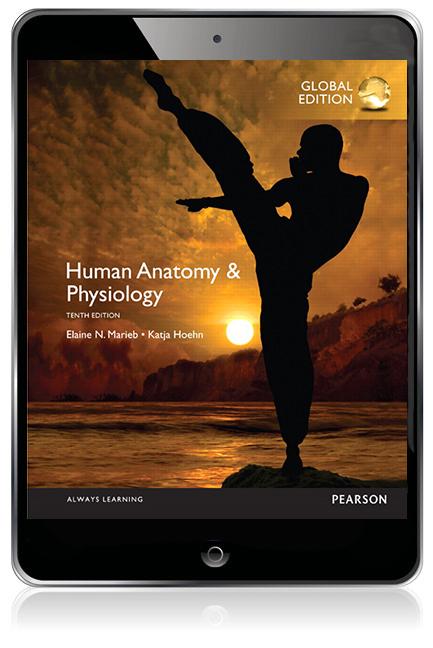 Human Anatomy Physiology Global Edition Ebook 10th Marieb