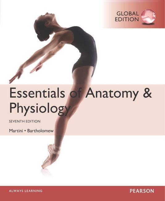 Essentials Of Anatomy Physiology Global Edition 7th Martini