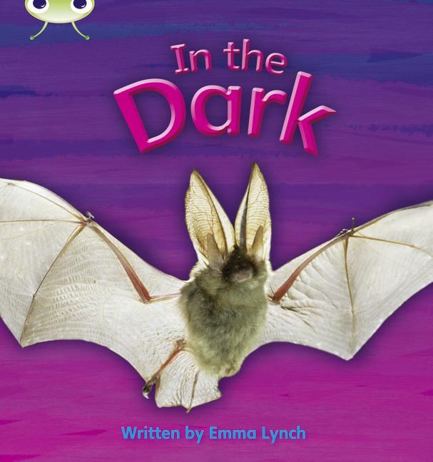 Bug Club Phonics Phase 3: In the Dark (Reading Level 5/F&P Level E)