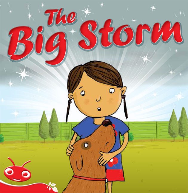 Bug Club Level  5 - Red: The Big Storm (Reading Level 5/F&P Level D)