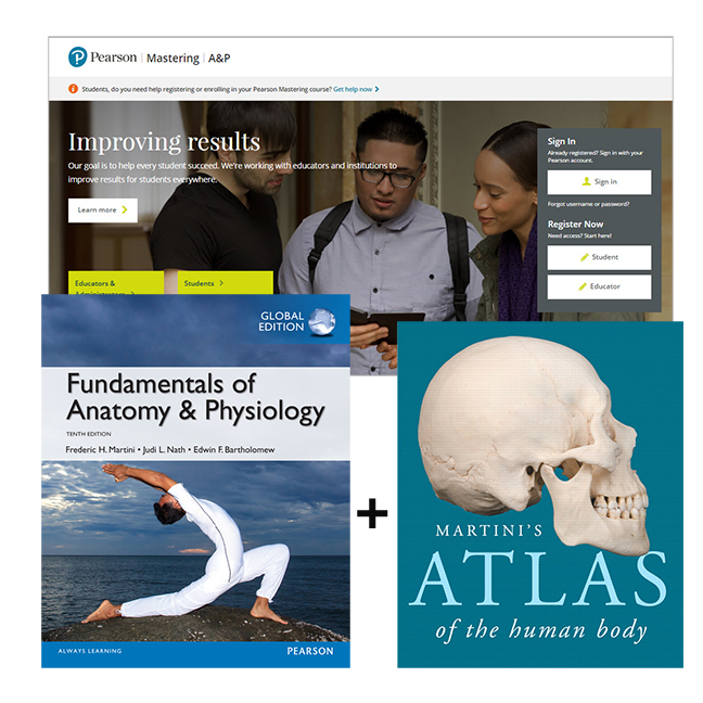 Value Pack Fundamentals Of Anatomy And Physiology Global Edition Martinis Atlas The Human Body MasteringAP With EText 10th Martini Nath