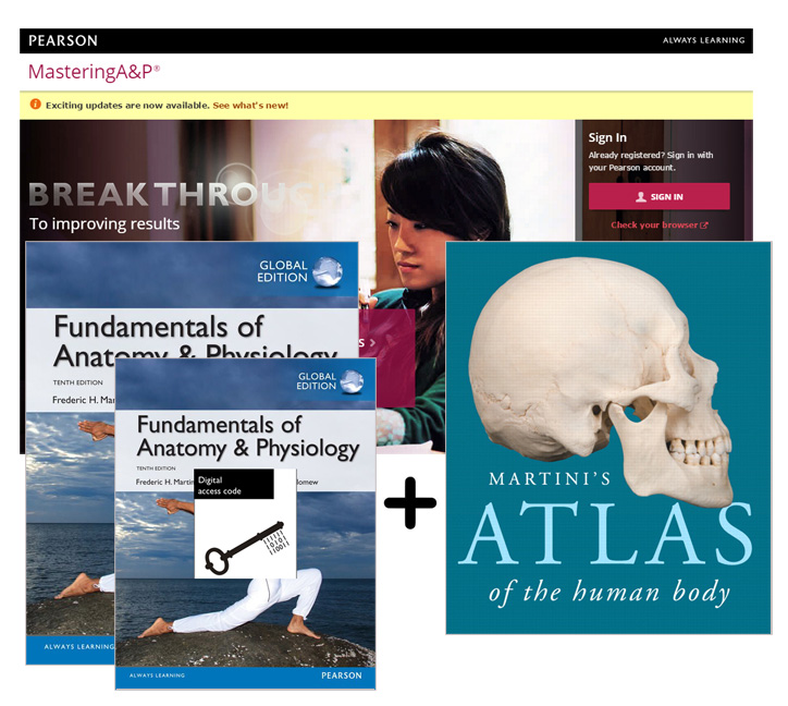 Value Pack Fundamentals of Anatomy & Physiology Global Edition + ...