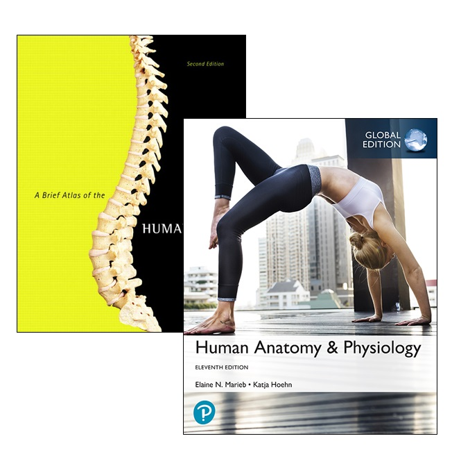 Human Anatomy Physiology Global Edition A Brief Atlas Of The