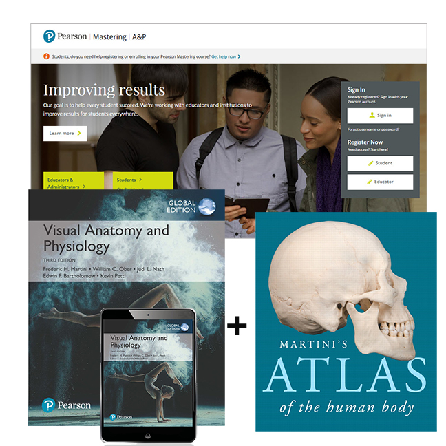 Visual Anatomy & Physiology, Global Edition + Atlas of the Human ...