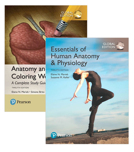 Essentials of Human Anatomy & Physiology, Global Edition + Anatomy ...