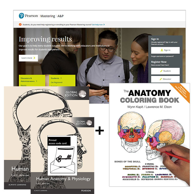 Human Anatomy & Physiology, Global Edition + The Anatomy Coloring ...