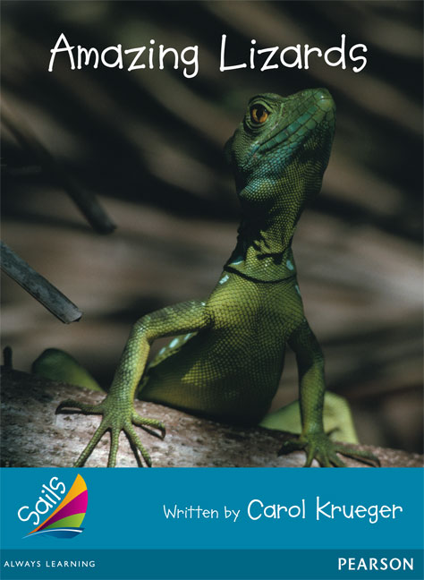 Sails Additional Fluency - Turquoise: Amazing Lizards (Reading Level 18/F&P Level J)