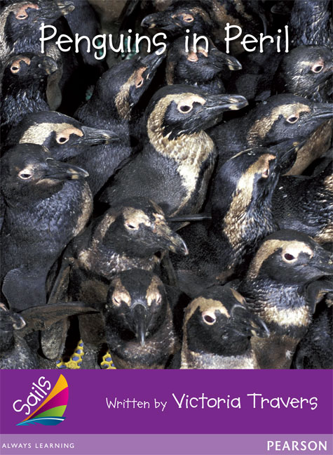Sails Additional Fluency - Purple: Penguins in Peril (Reading Level 23/F&P Level N)