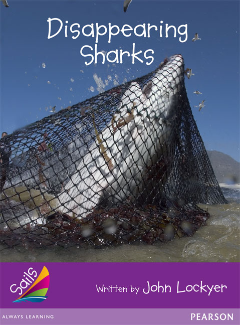 Sails Additional Fluency - Purple: Disappearing Sharks (Reading Level 23/F&P Level N)