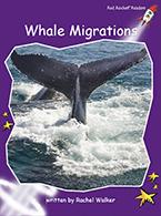 Red Rocket Readers: Fluency Level 3 Non-Fiction Set C: Whale Migrations (Reading Level 18/F&P Level M)