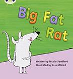 Phonics Bug Phase 2: Big Fat Rat (Reading Level 2/F&P Level B)