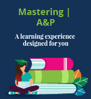 Mastering A&P resources for uni