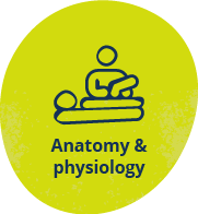 Anatomy and physiology resources for uni
