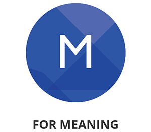 Focus on meaning