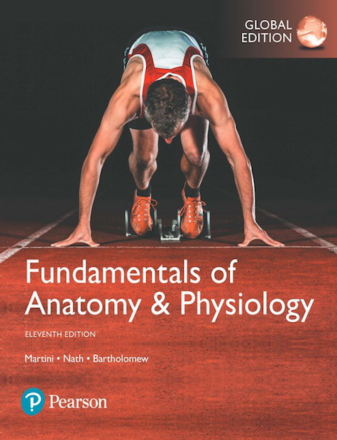 Fundamentals of Anatomy & Physiology, Global Edition, 11/E