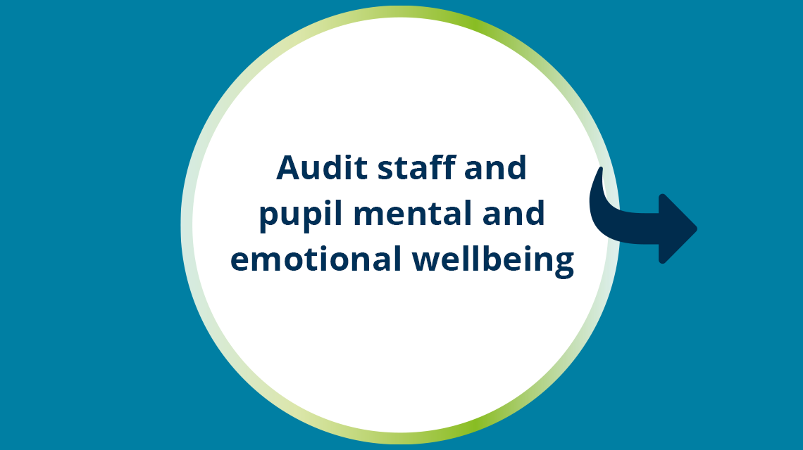 Audit staff and pupil mental and emotional wellbeing