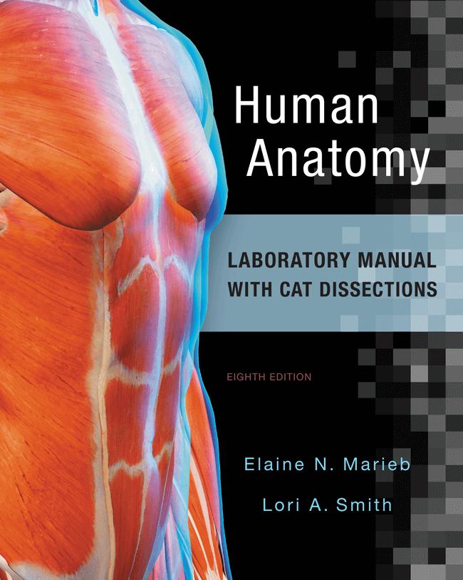 Marieb, Wilhelm & Mallatt, Human Anatomy, 8th Edition | Pearson