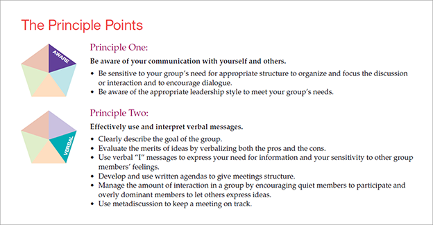 Beebe beebe ivy communication principles for a lifetime 6th summary the principle points fandeluxe Images